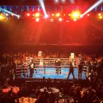 Danny Green Fight